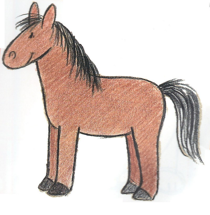 kindergeburtstag verleihkiste pferd