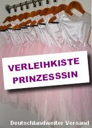 verkleidungskiste